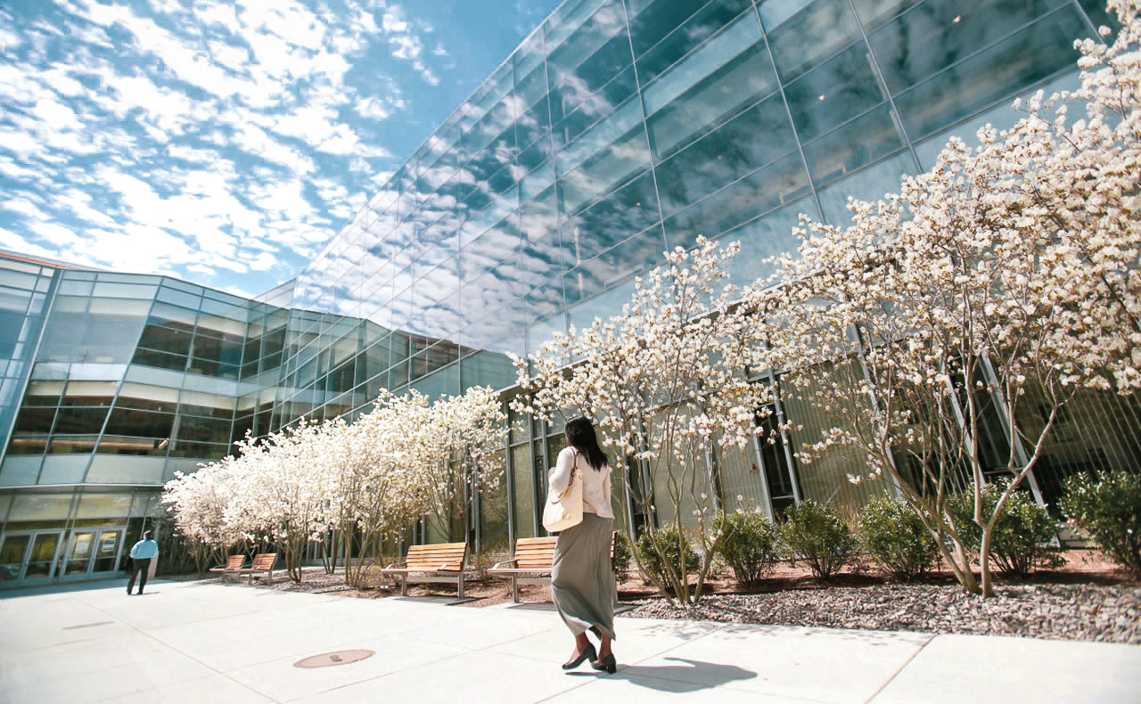 A woman walks by trees with white flowers by the Berry Library on a sunny, blue-sky day.