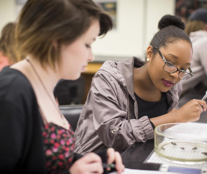 Two girls study in the Meier Hall lab.