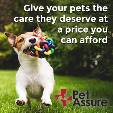 Pet Assure graphic