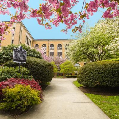 North Campus Spring