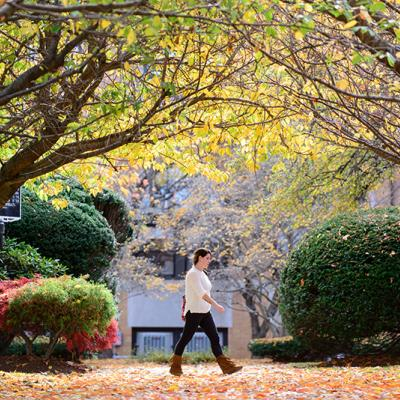 A student walks in front of the Sullivan building under fall foliage