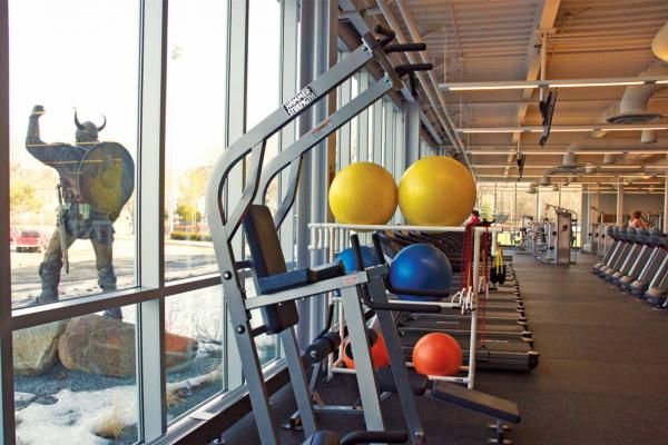 Workout equipment at the fitness center.